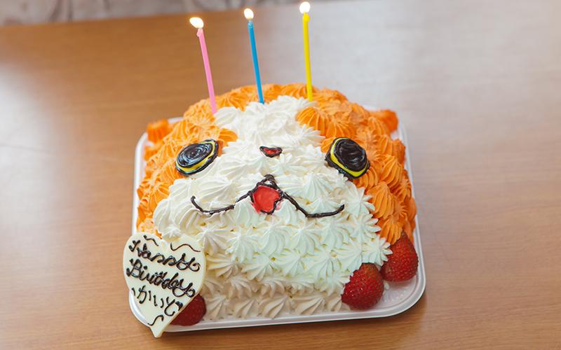 子供用誕生日ケーキ